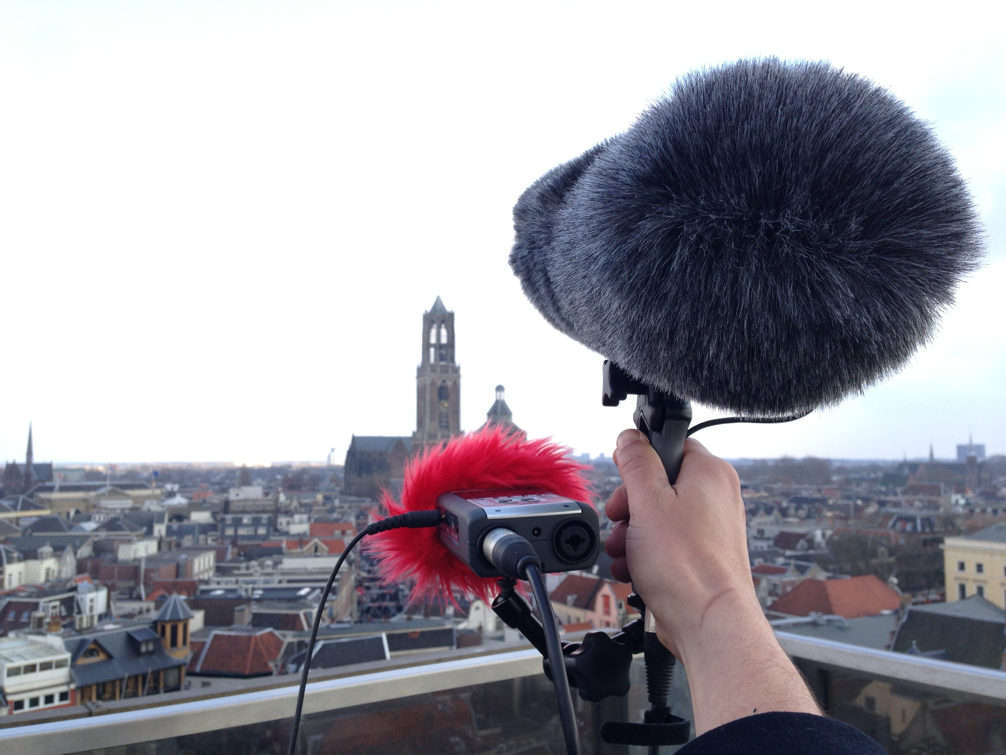 Hand holding a microphone on a rooftop with a city scape in the background.