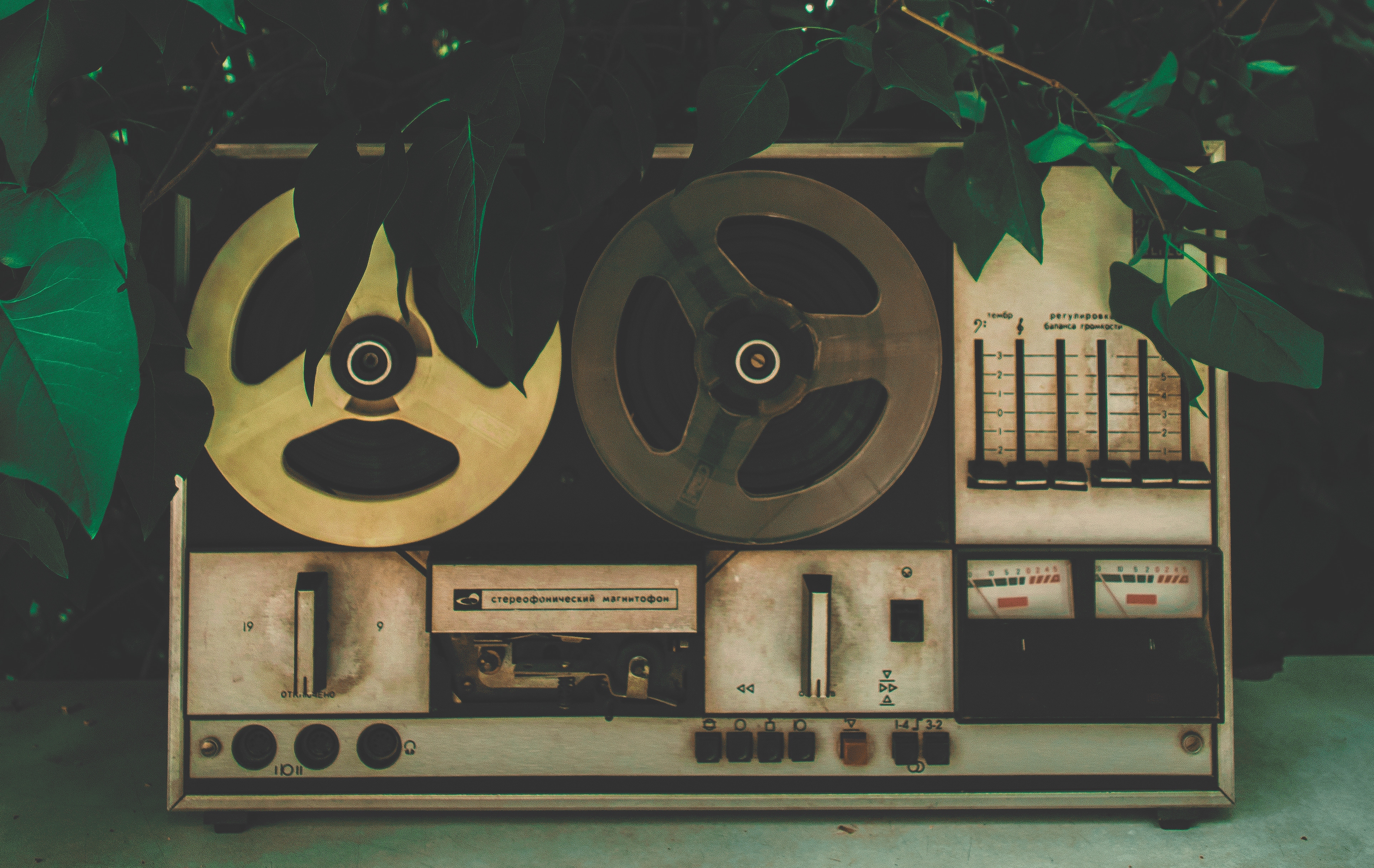 Reel-to-reel tape recorder surrounded by leaves and tree branches.